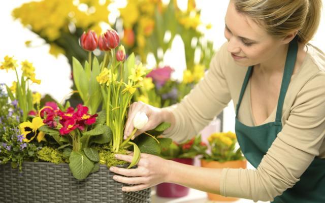 Требуется продавец цветов в Италию