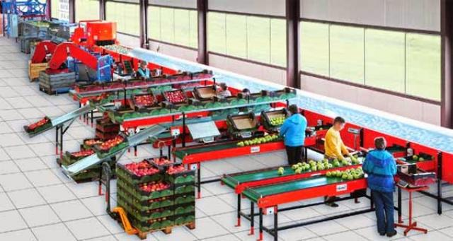 Срочно требуются в Бельгию рабочие на овощеводство